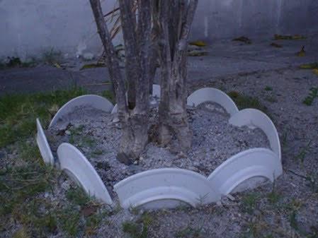 Broken Bone China plates reused for garden edging